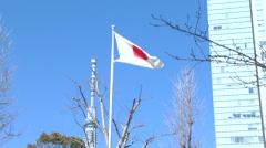 Japanese flag,Tokyo Sky Tree,building Stock Footage
