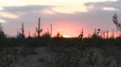 Night falls in the desert as the sun sinks to the horizon. Stock Footage