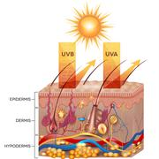 Protected skin with sunscreen lotion - stock illustration