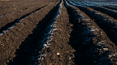 Ploughed Agricultural Land Stock Footage