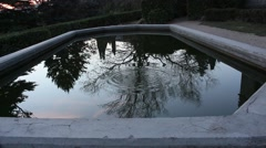 Reflection Of The Trees In The Pond. Stock Footage