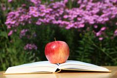 Apple with Book in Garden - stock photo