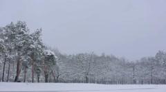 Winter park - stock footage