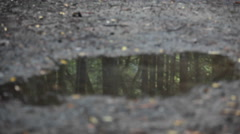 A woman jogs over a puddle reflecting the woods of the area where she is. Stock Footage