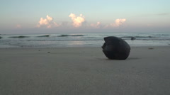 Ngwe Saung, coconut at the beach Stock Footage