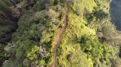 Kuliouou Hiking trail aerial Stock Footage