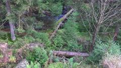 4k Autumn nature mountain range Harz tilt 180 degrees - stock footage