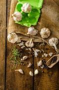 Domestic bio garlic - Czech, spices and fresh microgreens Domestic bio garlic - stock photo