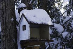 Bird house in the winter Stock Photos