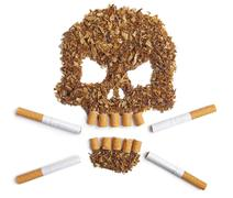 Death sign skull made of Tobacco – Smoking metaphor - stock photo