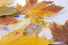 Stock Photo of 200 euros in autumn