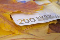 Stock Photo of 200 euros in autumn with leaves