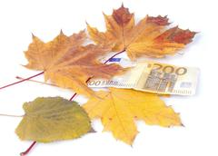 Stock Photo of 200 euros with leaves