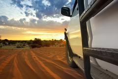 Kalahari safari Stock Photos