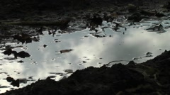 Moving clouds reflected in puddle of water moody Stock Footage