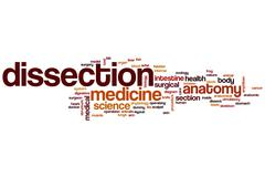 Dissection word cloud Stock Illustration