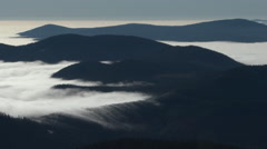 Mountain Fog Rolling Through Forest Stock Footage