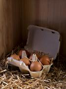 Close-up of a box full of eggs in a henhouse - stock photo