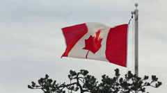Canadian Flag Flapping, Breezy Day Stock Footage