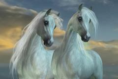 Arabian Brothers Stock Illustration