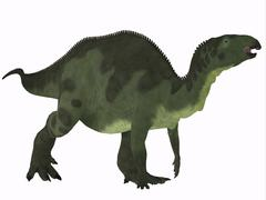 Stock Illustration of Camptosaurus over White