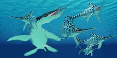 Liopleurodon attacks Eurhinosaurus Stock Illustration