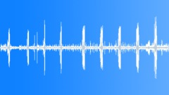Wonderful Eastern Oregon Wildlife -- Meadowlarks Sound Effect