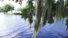 Spanish Moss And Tree Branch Hang Over Blue River Water Stock Footage