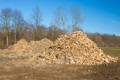 Biomass from lumber industry discards Stock Photos