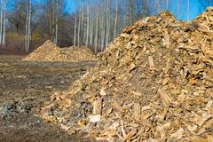 Biomass from lumber industry discards - stock photo