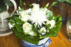 Stock Photo of white flowers