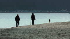 Senior couple and their dog on the beach walking Stock Footage