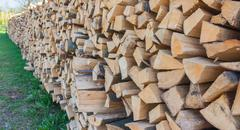 Firewood from Styria,outdoor shot - stock photo