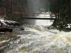 Fear of floods. Force of Nature. Huge stream masses below small footbridge - stock footage