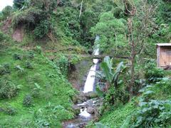 Jamaica waterfall Kuvituskuvat