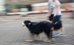 Man runs with his dog outside Kuvituskuvat