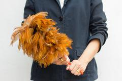 Woman holding a feather duster. Focus on hand and duster. Stock Photos