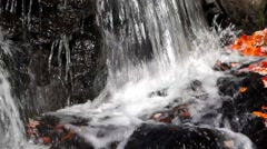 Small waterfall with fall leaves Stock Footage