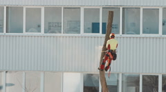 Lumberjack cutting tree urban city 3/4 Stock Footage