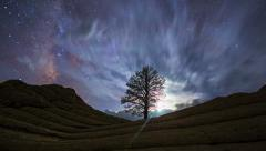 4K Night Sky Timelapse Milky Way Lone Tree - stock footage