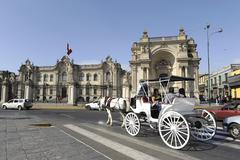 Carriage rolled tourists by the Presidential Palace - stock photo