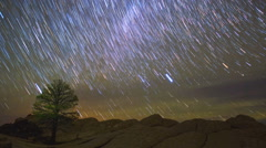 Star Trails Night Sky Timelapse Lone Tree Beauty - stock footage