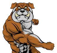 Bulldog attacking - stock illustration