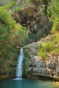 Ein Gedi Nature Reserve - stock photo