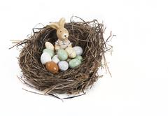 Easter nest with eggs and bunny Stock Photos