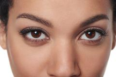 Cropped closeup image of female brown eyes Stock Photos