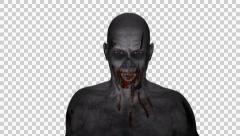 Vampire - Male - Bloody Zombie - Loop - Alpha -  25 fps Stock Footage