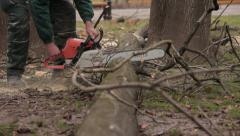 Lumberjack with chainsaw cutting tree in forest. Worker sawing chump. Low angle. - stock footage