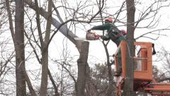 Two workers standing on the crane and cutting the broken branch with a chainsaw. Stock Footage