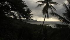 Jungle Landscape on the Island of Pohnpei Stock Footage